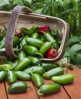 Jalapenos_in_basket